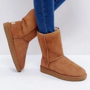 Ugg Classic Short Chestnut Boots 9